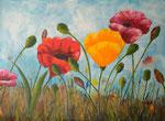 Bunter Mohn -  Acryl 80 x 60 = € 140