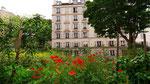 Fleurs des champs, rue Buffon - Marie-Agnès Barrère