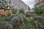 Le jardin du 12 rue Georges et Maï Politzer - Patrick  Choinier