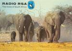 Radio RSA - 1981
