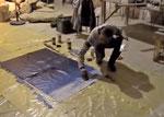 ilok / kroatien workshop & ausstellung FLUSS DER PHANTASIE DIE DONAU • künstlergruppe el-kordy • 2009
