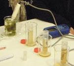 Schüler messen den PH-Wert und die Leitfähigkeit von Moorwässern.