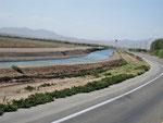 Hinter El Centro - Bewässerungskanal
