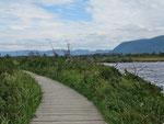 Western Brok Pond - der Trail