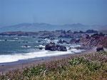 Sonoma Coast - Gleason Beach