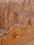 Bryce Canyon - Navajo Trail Erich
