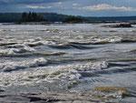 Die Rapids
