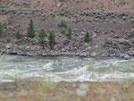 und entlang des Fraser Rivers