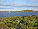 Boney Shore Trail - wo sind die Wal-Knochen ?