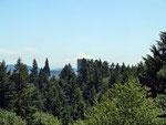 in der Ferne: Mt. Hood