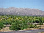 Mex. Landschaft