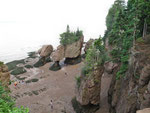 The Hopewell Rocks - Impressionen bei EBBE