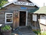 "das legendäre ""Wildcat Cafe"""