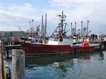 Fisch Trawler