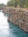Miles Canyon - Der Yukon zwischen Lava Wänden