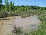 Gros Ventre River - Hochwasser