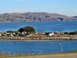 Blick vom Bodega Head auf unseren Campground