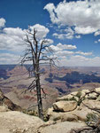 Grand Canyon Impression 1