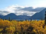 güldener Herbst