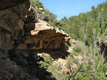 Grand Canyon - Cliff Springs  Trail - 2