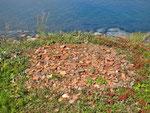Ziegel-Reste aus Europa