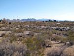 Aussicht über den Campground
