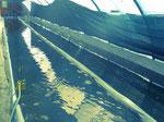 bassin de spiruline