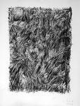 250215, Kohle auf Papier, 150 x 120 cm