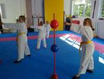 Karate Team Achern für Behinderte5