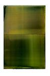 Engramm 71  2010  Acrylfarbe, Kunststoffsiegel, Ölfarbe auf MDF   30 x 20 cm