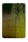 Utopischer Körper 41 2010  Acrylfarbe, Kunststoffsiegel, Ölfarbe auf MDF  30 x 20 cm