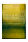 Engramm 88  2012  Acrylfarbe, Kunststoffsiegel, Ölfarbe auf MDF   30 x 20 cm