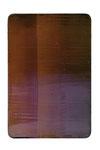 Utopischer Körper 19  2006  Acrylfarbe, Kunststoffsiegel, Ölfarbe auf MDF  30 x 20 cm