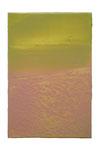 Engramm 100  2012  Acrylfarbe, Kunststoffsiegel, Ölfarbe auf MDF   30 x 20 cm