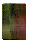 Utopischer Körper 38 2010 Acrylfarbe, Kunststoffsiegel, Ölfarbe auf MDF  30 x 20 cm