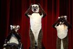 Lemuren-Kostüm