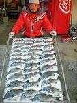 2月22日 ダゴチン釣りで高浪さん メイタ37㎝~17㎝をなんと40匹
