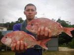 7月2日 ボート釣りで島田さん タイ36㎝・34㎝