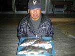 3月13日 磯から松尾さん 良型チヌ45.5㎝を頭に3匹