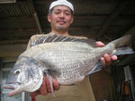 8月8日 ダゴチン釣りで高浪さん ガバチヌ50㎝を頭に3匹