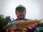6月4日 ボート釣りで藤森さん ビッグキス28㎝