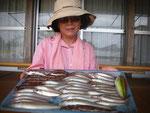 7月26日 キス釣りで野崎夫婦 キス23㎝を頭に35匹 トラギス20㎝を頭に13匹