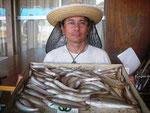 7月30日 ボート釣りで城さん キス24㎝を頭に72匹