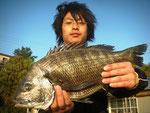 4月18日 磯から川崎さん 良型チヌ45.5㎝