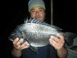1月2日、ダゴチヌ釣りで小平さん ガバチヌ50㎝