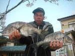 4月9日 磯から高田さん 良型チヌ48.8㎝・42㎝