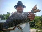 5月15日 ダゴチン釣りで吉田さん 50.6㎝
