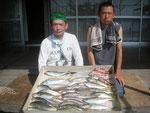 7月9日 ボート釣りで宮川さん アジ25㎝~22㎝18匹 キス21㎝を頭に21匹 ガラカブ19.5㎝を頭に3匹