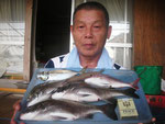 8月27日 ダゴチン釣りで宮村さん チヌ35㎝を頭に3匹 タイ25㎝ アジ24.5㎝