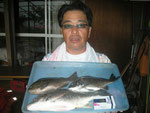 8月22日 ダゴチン釣りで園藤さん キビレ40㎝を頭に2匹 クロ27.5㎝1匹